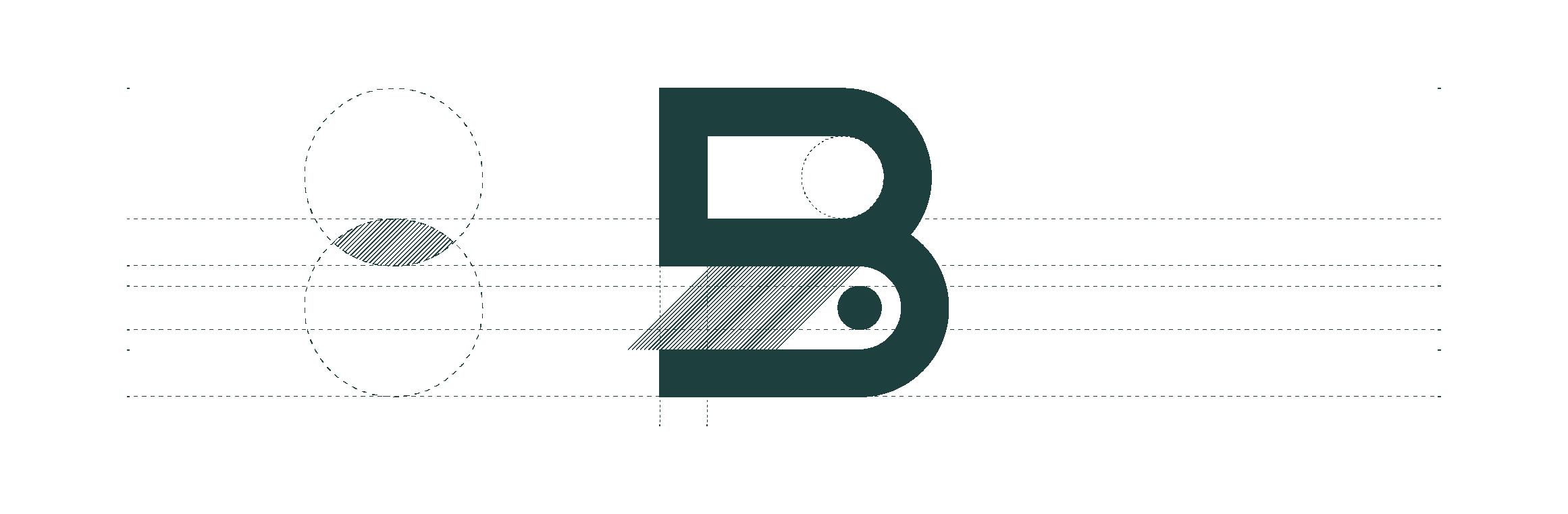 B_Bernardus-01